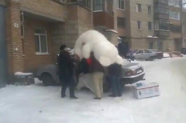 Metiendo un enorme oso de peluche en el coche... Rusia