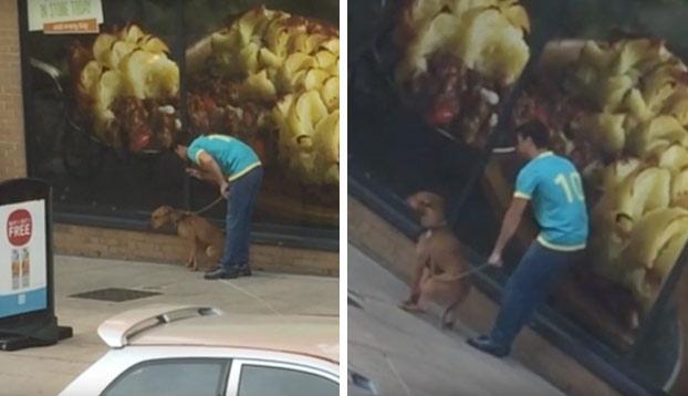 Graban a un hombre forzando a sentarse a su perro a puñetazos