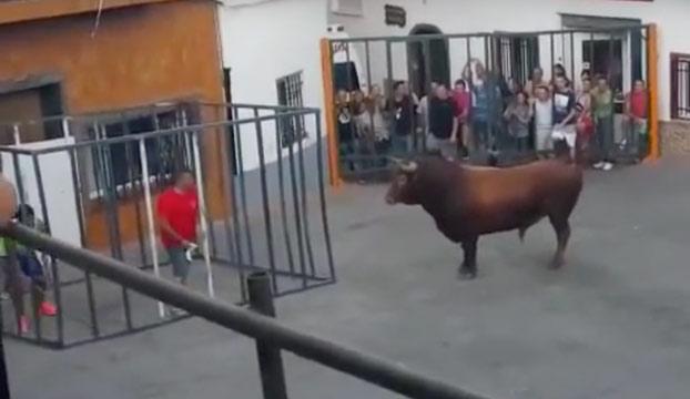 Un toro rompe la jaula de seguridad y embiste brutalmente a un hombre que estaba dentro en Valencia
