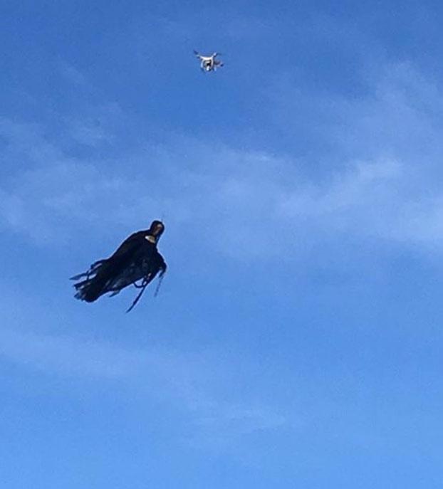 dementor-drone-4