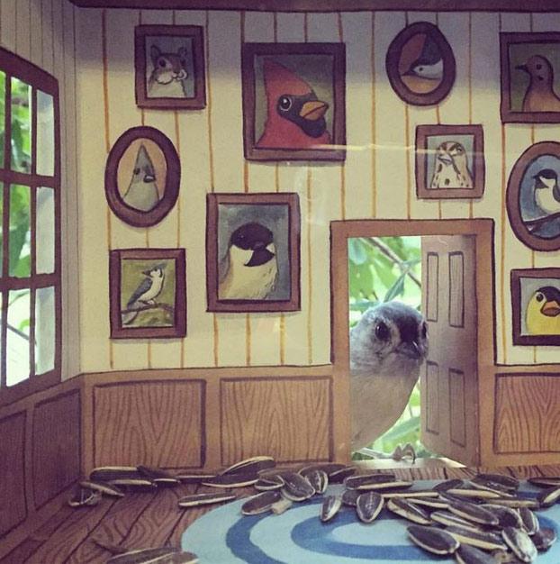 Esta mujer construye diminutas casitas para los pájaros que la visitan