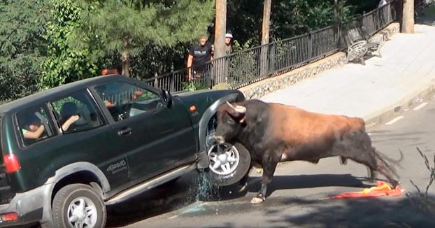 Cuando estás viendo un encierro con la familia en un 4x4 y el toro te destroza el coche (Vídeo)