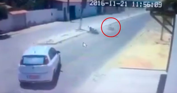 Sufre una fuerte caída en la moto y al levantarse ni se imaginaba lo que se le venía encima