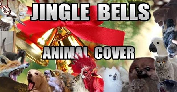 El Jingle Bells más animal que verás jamás