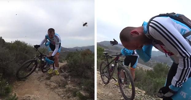 Un grupo de 20 ciclistas granadinos son atacados por un enjambre de abejas (Vídeo)