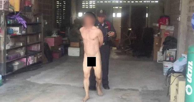 Detenido un hombre por mantener relaciones sexuales con una vaca
