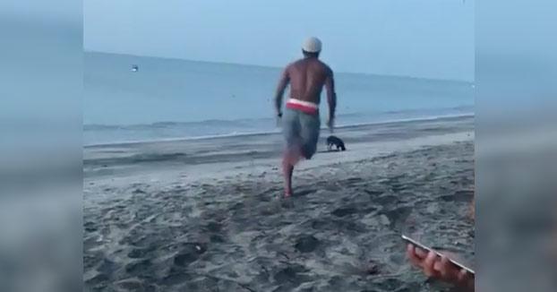 Intenta dar una patada a un perro y es atacado por una manada