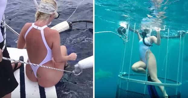 La actriz porno Molly Cavalli atacada por un tiburón en plena grabación