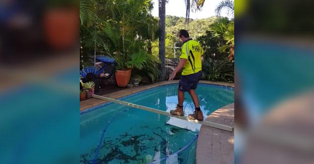 Este chico aceptó la apuesta: 100 euros si era capaz de cruzar la piscina por el listón de madera