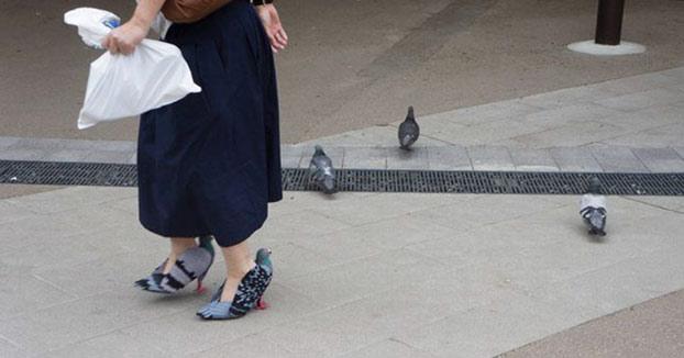 Una señora se hace unos zapatos con forma de paloma con un propósito