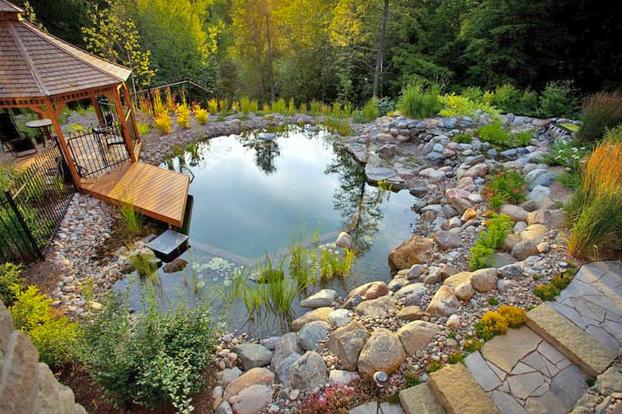 C mo hacer una piscina natural for Como hacer una piscina natural en casa
