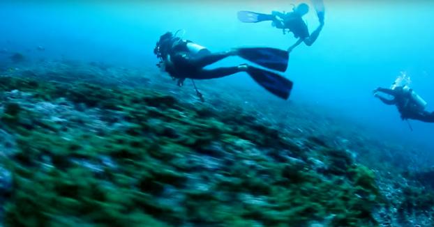 Buceadores a la deriva en una corriente marina en la Polinesia Francesa