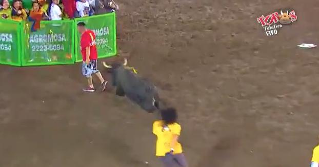 Es embestido por un toro y cuando piensa que se ha librado, ocurre lo siguiente...