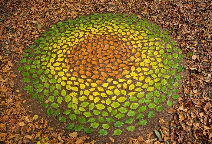 Este artista pasa horas colocando objetos naturales para crear increíbles mandalas y que la gente se los encuentre
