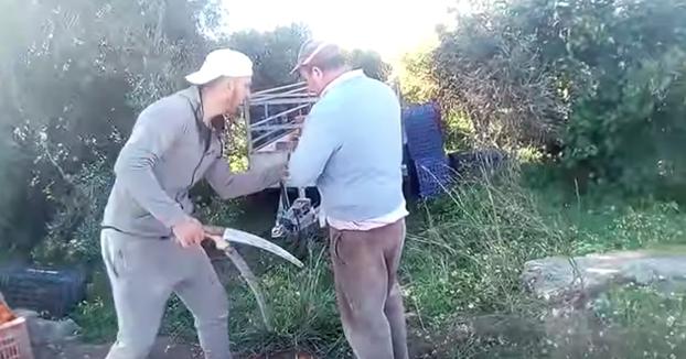 Cómo me roban la cosecha. Te lo cuenta un agricultor de Valencia