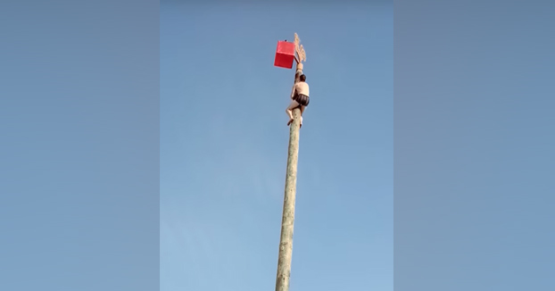 Subiendo a lo alto de un poste sin ningún tipo de protección. ¿Qué puede salir mal?