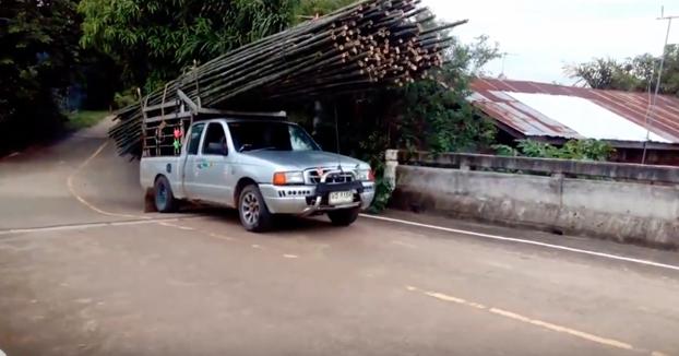 ¿No será demasiado bambú para llevar en el coche? Que va, tu déjame a mí...