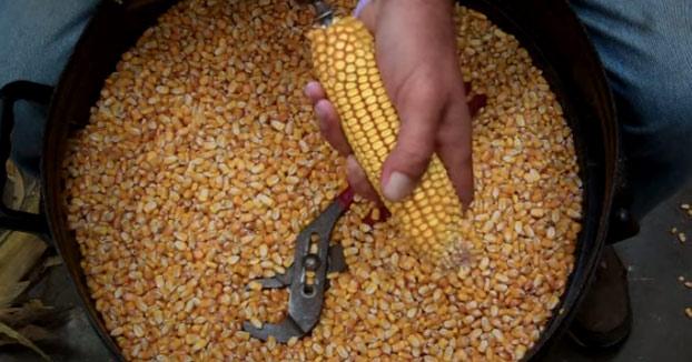 Cómo desgranar una mazorca de maíz en un segundo