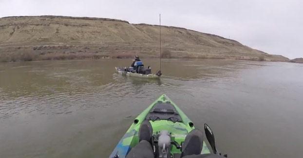 Graba como un enorme esturión casi derriba el kayak de su compañero