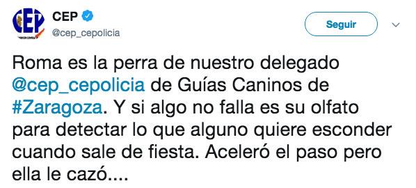 Una perra de la policía de Zaragoza especialista en detectar drogas corre hacia un joven que intentaba pasar desapercibido