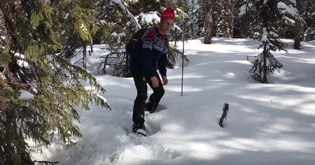 Iban de ruta por el monte cuando vieron un hoyo en la nieve