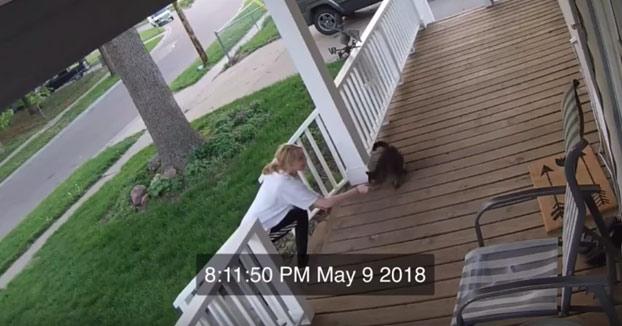 Mujer intenta secuestrar a un gato que estaba en el porche de una casa y este consigue escapar
