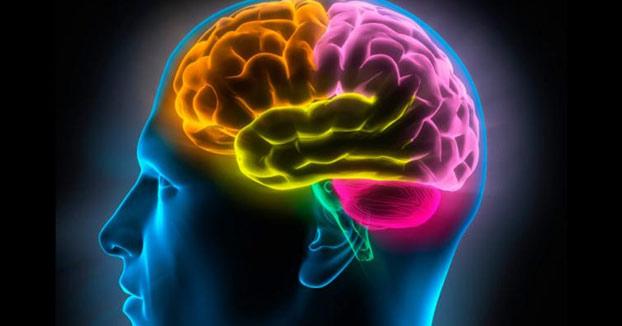 ¿Cómo ven el mundo las personas con sinestesia?