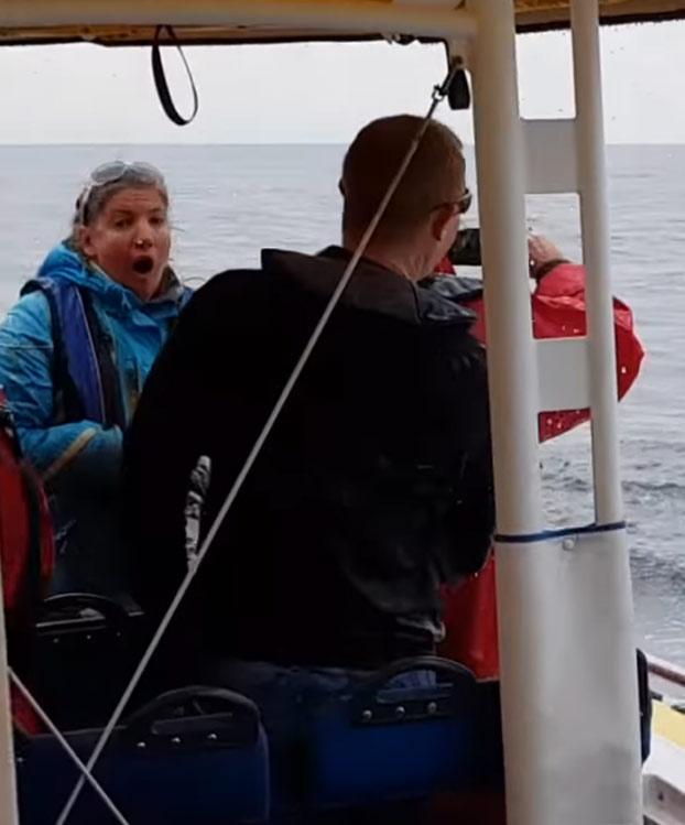 Estaban en una excursión de avistamiento de ballenas y lo que menos se imaginaban es que una saltase justo delante de ellos