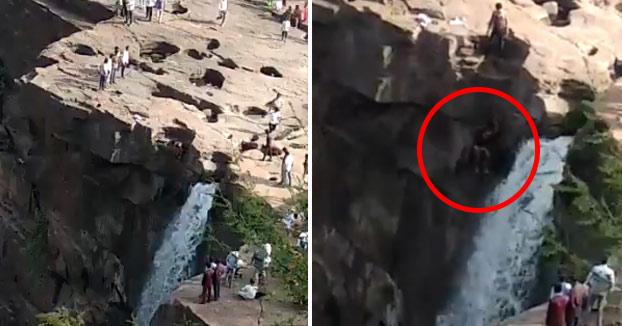Momento en el que un joven cae por las cataratas Gokak al intentar mejorar el ángulo de su foto