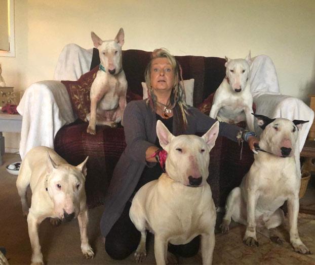 El marido le dijo a la mujer ''Los perros o yo'' y ella eligió a los perros