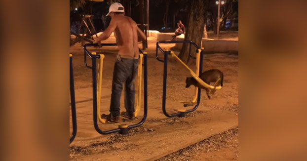 Mientras tanto, en un parque con máquinas para mayores...