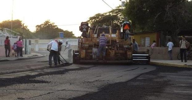 Unos obreros vierten asfalto sobre un perro que dormía