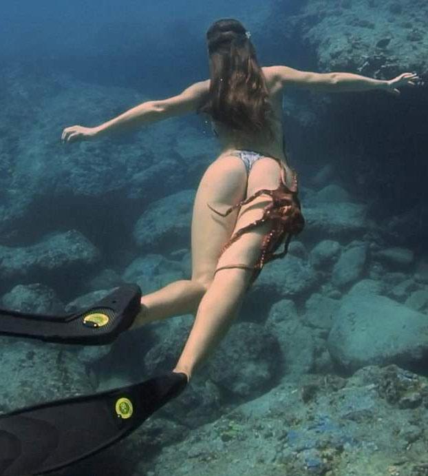 Un pulpo se agarra a la pierna de una buceadora durante una sesión de buceo en Hawaii