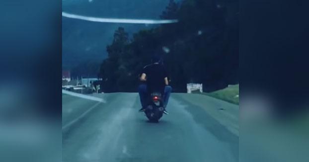 Iban borrachos circulando en moto y acaban chocando contra una vaca que cruzaba la carretera