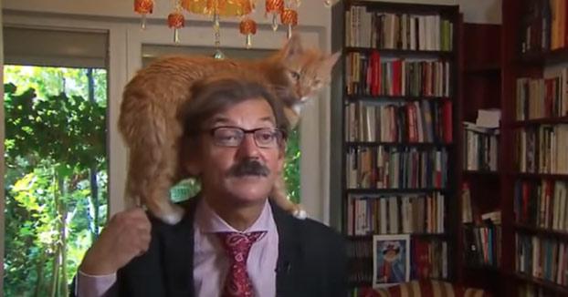 Este historiador polaco estaba dando una entrevista a la televisión holandesa cuando un gato apareció en escena