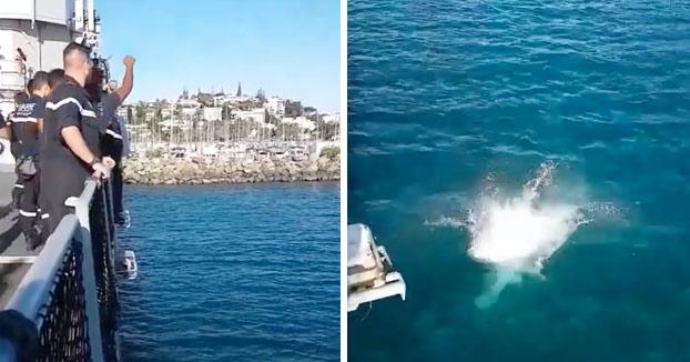 Estos marineros lanzan a un compañero al agua y segundos más tarde le dicen que salga rápido que un tiburón va hacia él