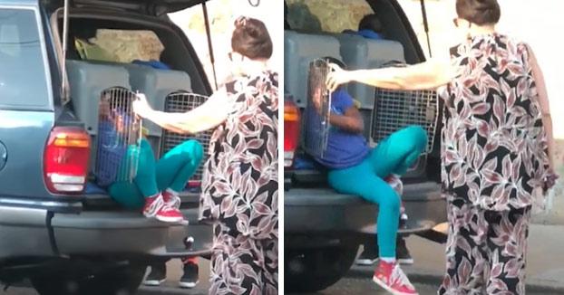 Detenida una mujer por llevar a sus nietos en un transportín para perros en el maletero del coche