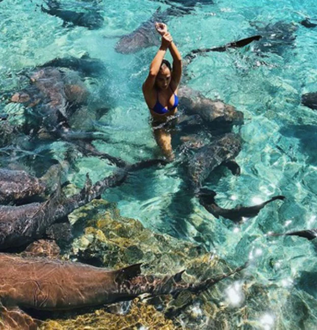 Un tiburón muerde a una instagramer cuando se hacía unas fotos en Bahamas