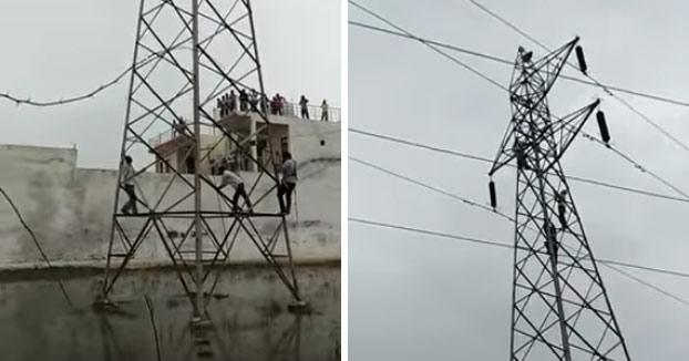 Un mono se lanza desde lo alto de una torre de alta tensión tras permanecer atascado tres días