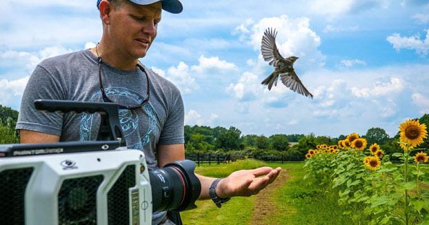 Un pájaro alzando el vuelo a 20.000 fps