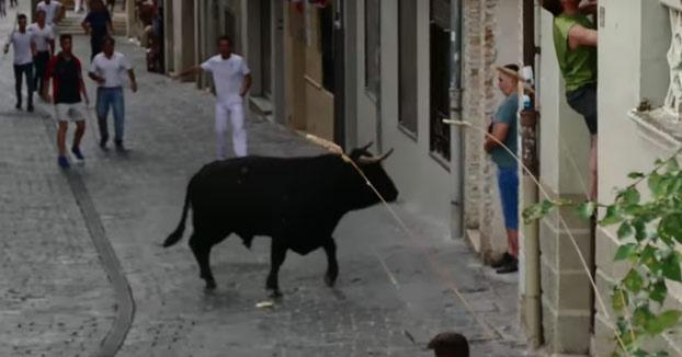 Un toro cornea varias veces a un hombre que grababa el encierro con una tablet en Navarra