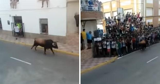Un toro mata de una cornada a un joven en un encierro de Fernán Caballero, en Ciudad Real, cuando trataba de refugiarse