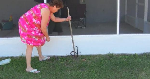 La abuela intentando atrapar una serpiente en el jardín...