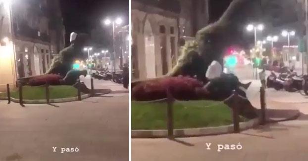 Se busca al gamberro que dañó al Dinoseto y su cría en Vigo [Vídeo]