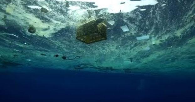 Multiplicación de los panes y los plásticos. Vídeo de un pescador