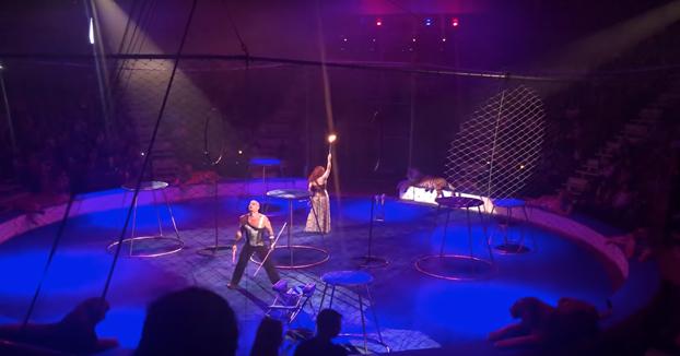 Un tigre sufre un ataque de epilepsia en pleno espectáculo de circo. Vídeo del momento