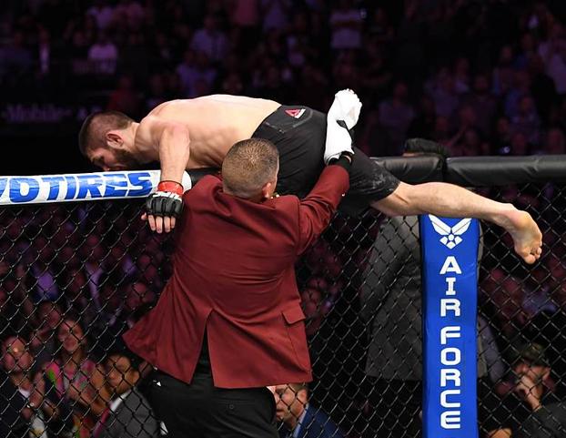 Khabib desata una batalla campal después de vencer a McGregor en el UFC 229. Vídeo del incidente