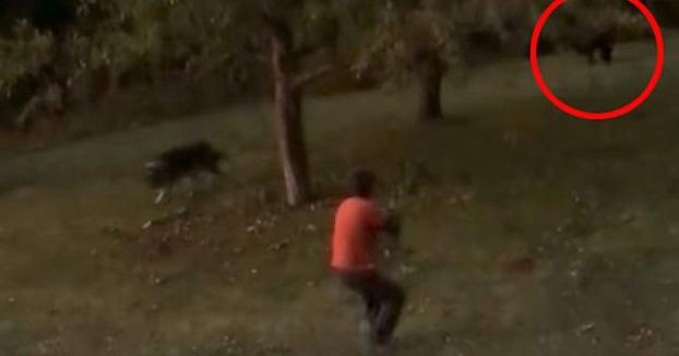 Una mujer graba como su marido dispara a un oso que iba directo hacia él