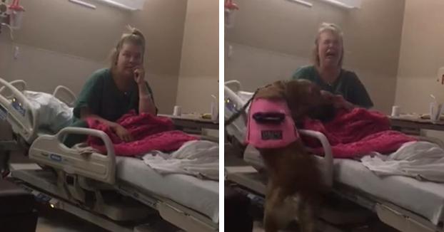 Reacción de una mujer que lleva 4 meses ingresada en el hospital al volver a ver a su perro