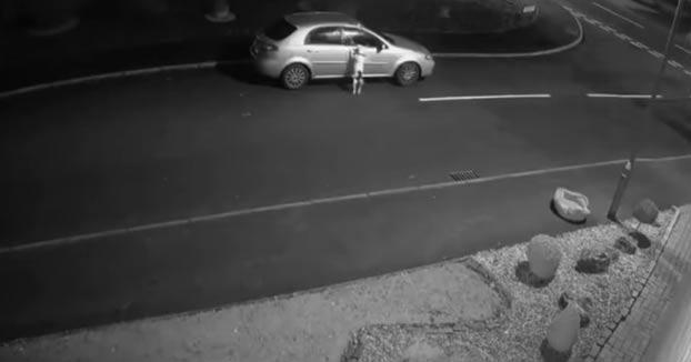 Difunden un vídeo de un hombre abandonando a su perro junto con su cama para intentar localizarlo